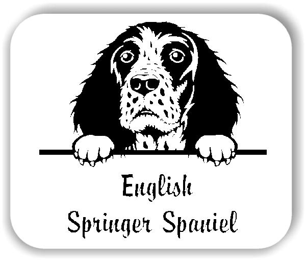 Wandtattoos Tiere - Hunde - English Springer Spaniel
