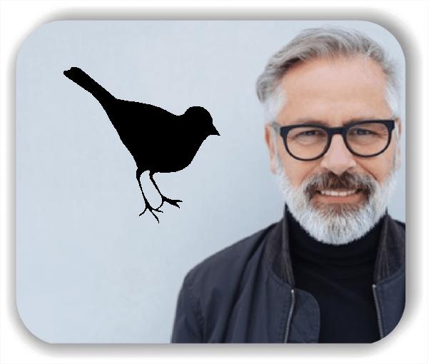 Wandtattoos Tiere - Kleiner Vogel