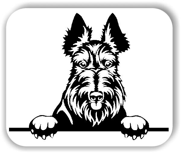 Wandtattoos Tiere - Hunde - Scottish Terrier - ohne Rassename