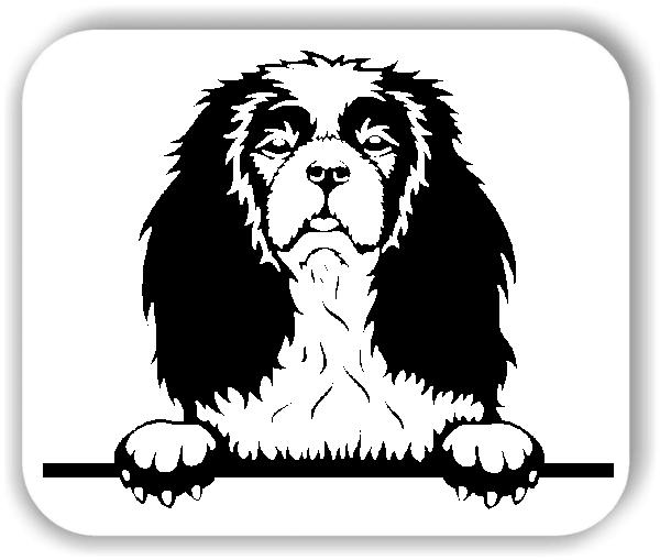 Wandtattoos Tiere – Hunde - Cavalier King Charles Spaniel - ohne Rassename