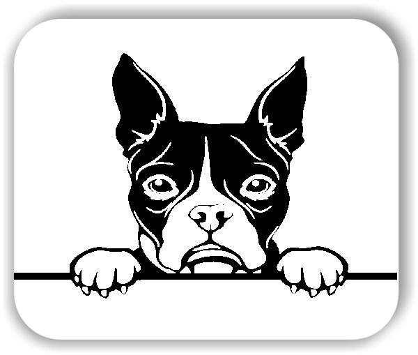 Wandtattoos Tiere - Hunde - Boston Terrier - ohne Rassename