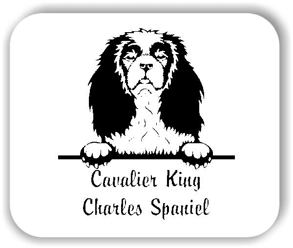 Wandtattoos Tiere - Hunde - Cavalier King Charles Spaniel