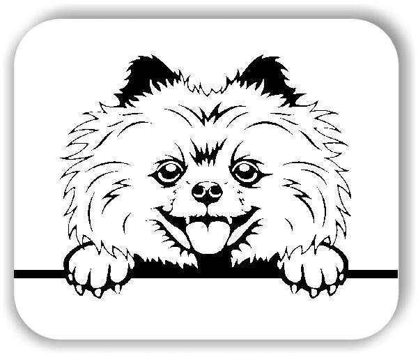Wandtattoos Tiere - Hunde - Pomeranian Variante 4 - ohne Rassename