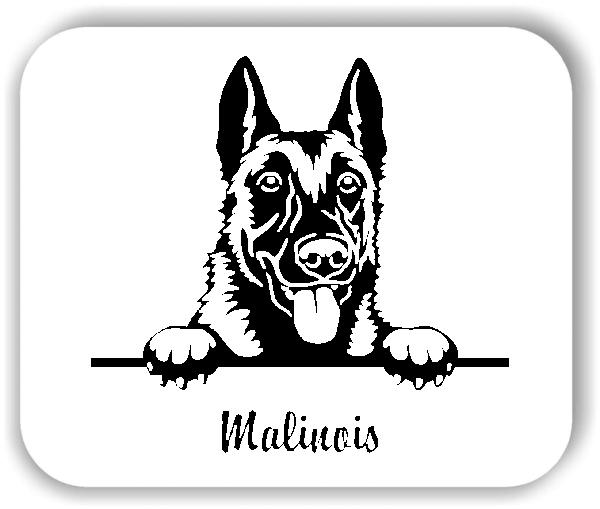 Wandtattoos Tiere - Hunde - Malinois Variante 1