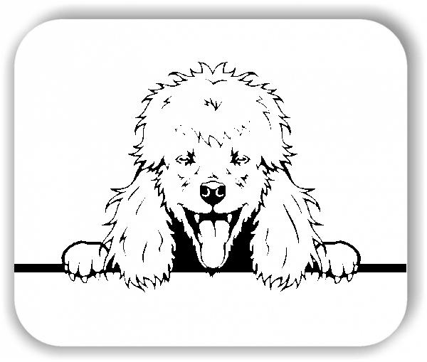 Wandtattoos Tiere - Hunde - Pudel Variante 3 - ohne Rassename