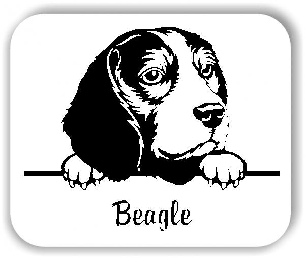 Wandtattoos Tiere - Hunde - Beagle