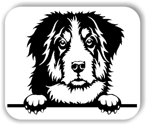 Wandtattoos Tiere - Hunde - Berner Sennenhund - ohne Rassename