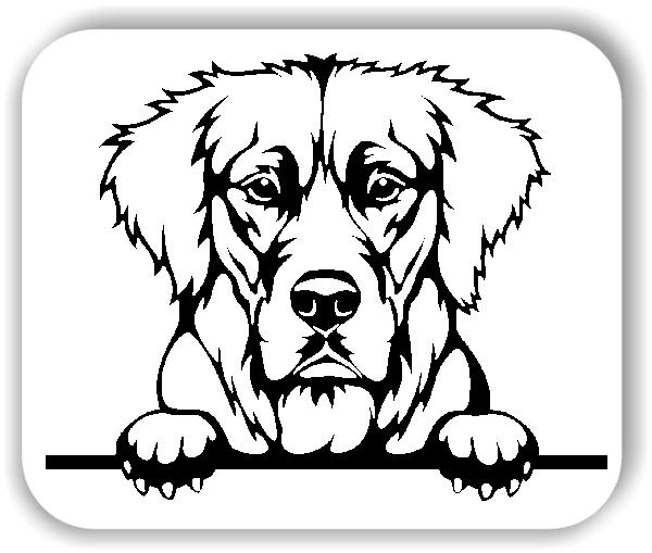Wandtattoos Tiere - Hunde - Golden Retriever Variante 4 - ohne Rassename
