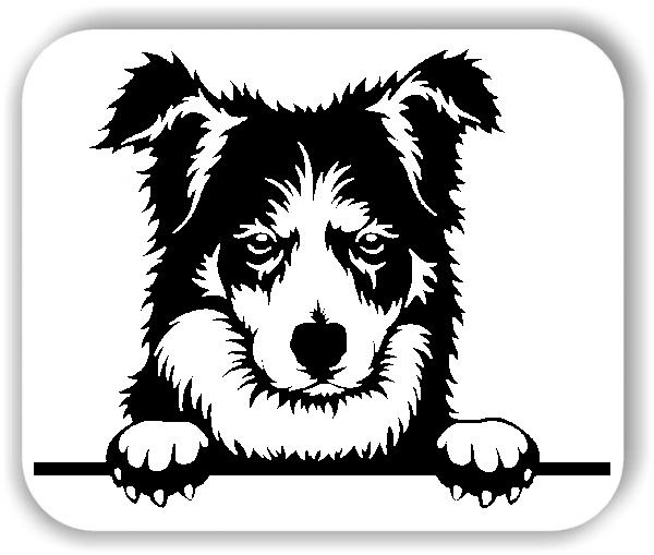 Wandtattoos Tiere - Hunde - Border Collie - ohne Rassename