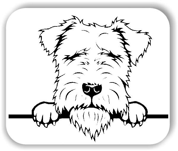 Wandtattoos Tiere - Hunde - Lakeland Terrier - ohne Rassename