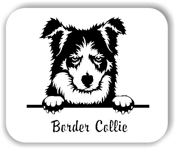 Wandtattoos Tiere - Hunde - Border Collie