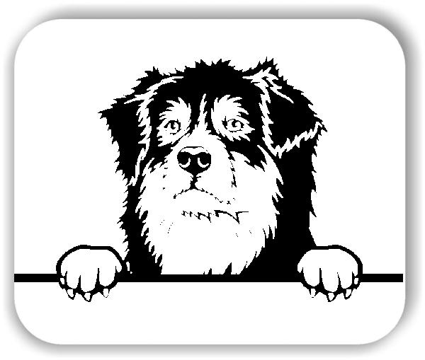 Wandtattoos Tiere - Hunde - Australian Shepherd - ohne Rassename